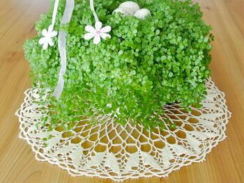 Tablecloth EMILIE 111 0051 ecru, diameter 34 cm - 1